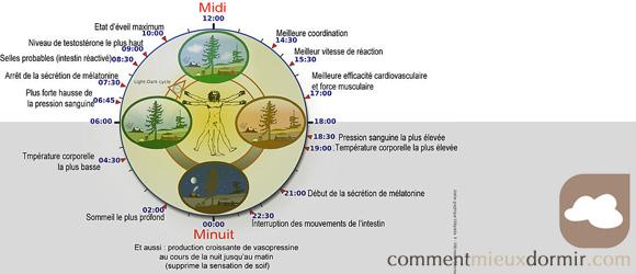 la définition de la chronobiologie
