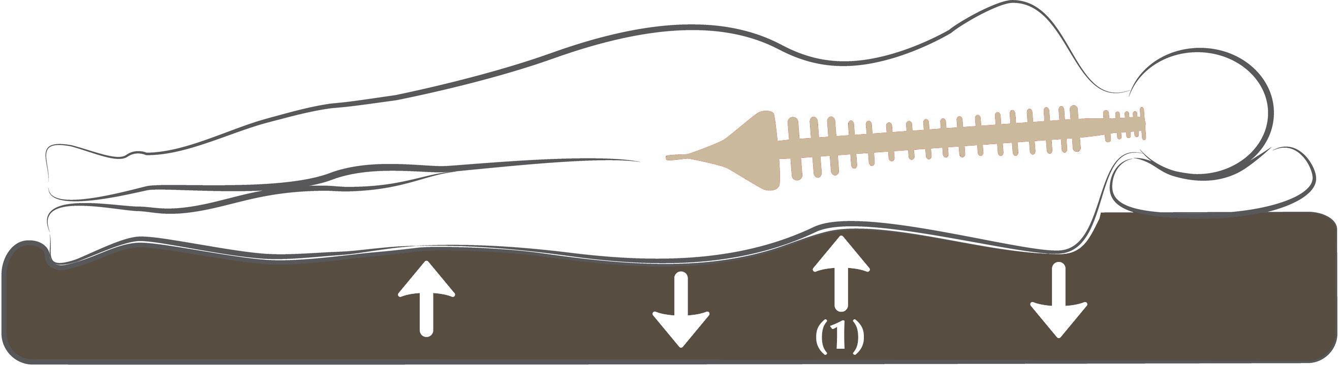 Le maintien du corps par le matelas